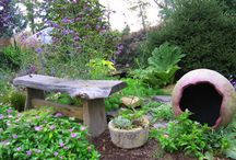 Plants and Garden / by Donna Smith