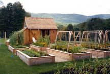 Zahrada - garden / Zahradničení