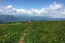 Trail Running - Asheville + Surrounding Areas