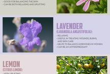 Holistic Health / Natural remedies and healthy ideas / by Julia Wilson