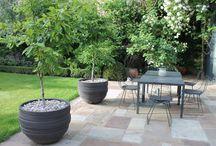 London Garden / Jane Brockbank Gardens - small London garden