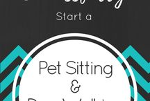 dog sitting and walking business