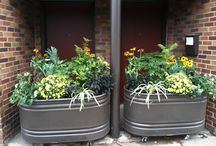 Fall Planters / Ideas for fall planters