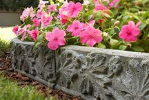Garden / Be sure to check out my other garden boards / by Devera Brower