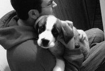 New pup info