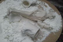 white / la possibilité de main