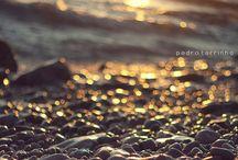 / Photography /
