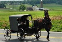 For the love of Amish