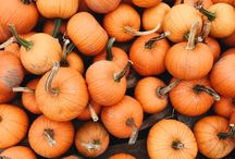 fall fever