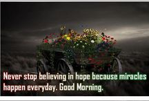 Good Morning Quotes / 0