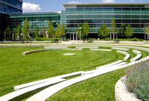 University campus landscape design