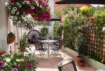 Garden ~ English Courtyards / by Jenn Tavoletti