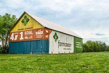 Farm Credit / by Farm Credit Bank of Texas