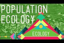 Teaching - Ecology / by Kristina Nicole