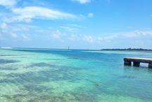 Pulau kelapa / Kelapa island