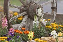 Vognhjul og blomster