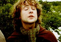 OMG pippin