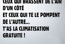 Humour et citation