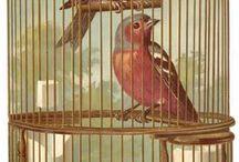 Birds & Birdcages vintage papers