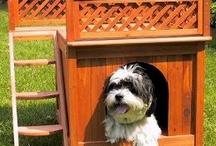 Schattige honden huisjes en honden meubels