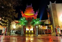 Disney's Hollywood Studios / Learn while you play at Disney's Hollywood Studios!