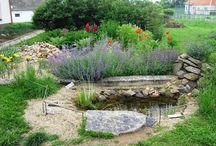 Za čistou vodu /// Water in garden