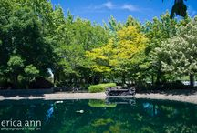 Oasis Shady Grove / The Shady Grove is an incredible hidden gem on the Water Oasis property. It's lush greenery and incredible lighting pair beautifully with the tranquil waterfall and serene pond