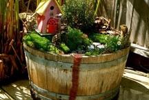 Kids gardens / by Lisa Piccioli