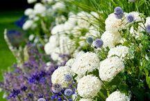 bloemenborders
