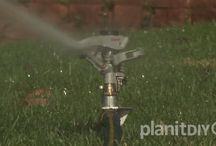 How To Water Your Yard