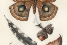 botany / botanical art and odds