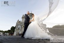 DREAMS COME TRUE / Dream's Birdes in wedding day