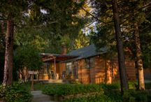 Cabin Rentals / by The Pines Resort on Bass Lake