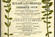 Herbarium antique