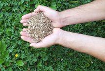 Bois de chauffage / L'énergie écologique!