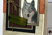 Wolves / Birthday Cards / by Diana Herring