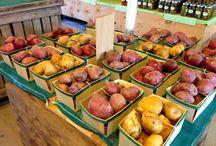 Beth's Farm Market / Fresh Produce, Food, and Garden plants
