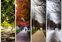 Photos On Campus / by Wright State University