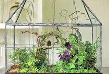 Flowers and gardenstuff