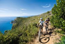 Tours 2015 by Arbaspàa: discover the Cinque Terre! / Daily tours and excursions in Cinque Terre & Liguria!