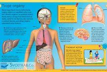 ľudské telo a zdravie