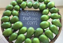 Avocados / Ailemin Bahçesi