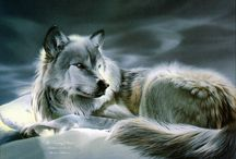 paintings of wildlife and nature