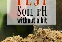 acid or alkaline soil test