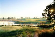 Tee Up For Golf / An Alabama Gulf Coast vacation means you're staying near courses designed by the legends of Golf