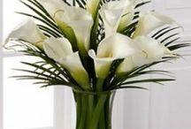 Flowers from Friend(s) / by Diane Liedman