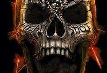 Head of Skull