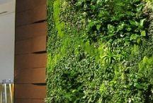 Living walls / Viherseinät, vertikaalipuutarhat, nature art, living walls