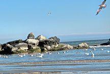 Life, Nature, Landscapes / My shots with Canon EOS 700D, DJI Phantom 4, ZenPhone 3