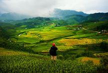 Du lịch Việt Nam - Vietnam Travel / Travel the world :) http://dulichbui24.com/